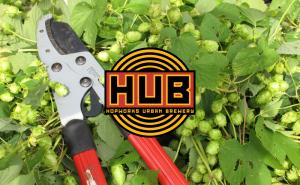 2015-fresh-hops_hub