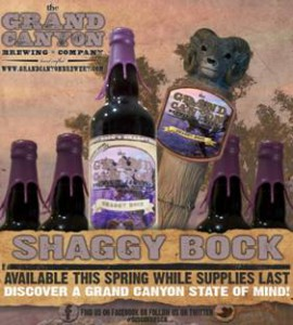 grand canyon shaggy bock