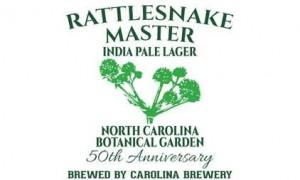 rattlesnake_master