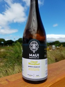 maui dogfish head Liquid Breadfruit Ale