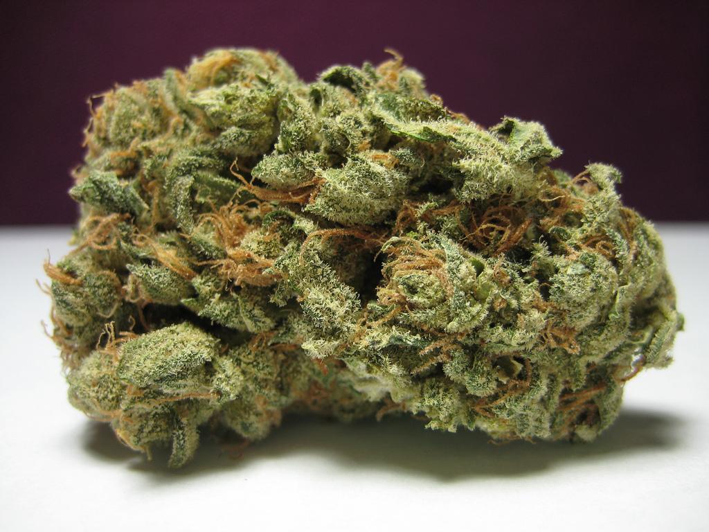 Craft Marijuana