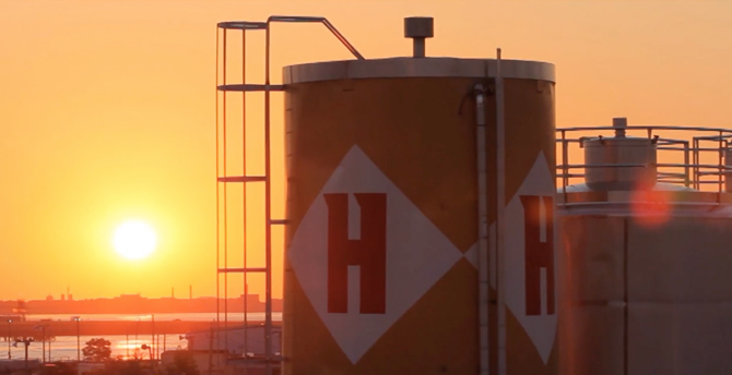Harpoon Brewery Scores Last-Minute World Series Ad
