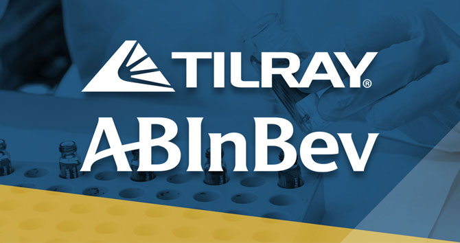 Budweiser maker to team with Tilray to research marijuana-infused drinks