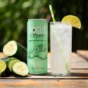 Rogue Ales & Spirits Rolls Out RTD Canned Cocktail Line